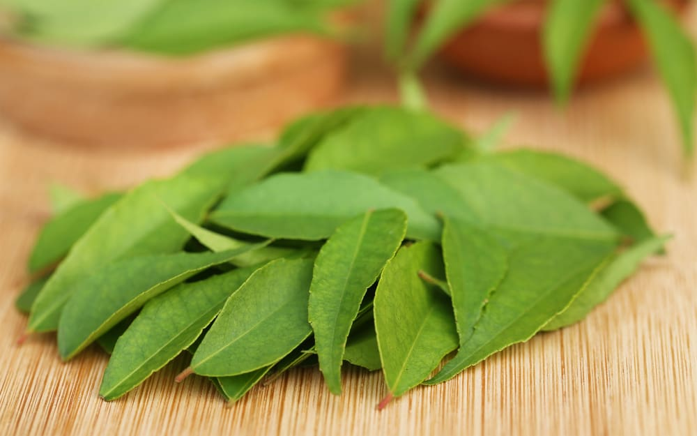 curry leaves for grey hair